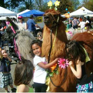 llama kids